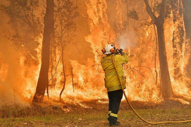 Canicule et incendies en Australie: l'état d'urgence décrété dans le sud-est du pays