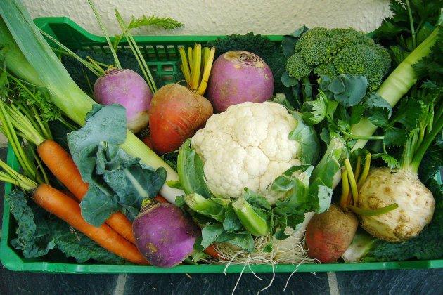 Reprendre une alimentation saine