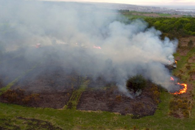 Incendie sur une parcelle forestière:deux hectares brûlés