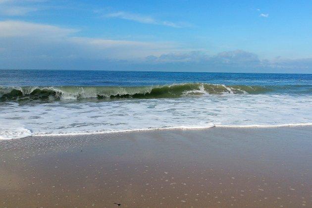 La baignade est de nouveau autorisée sursept plages