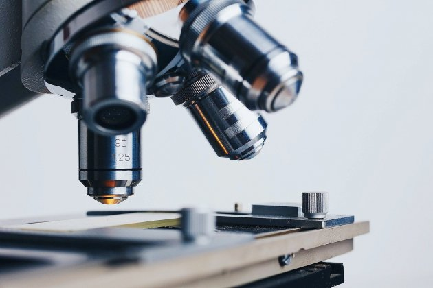 Ig-Nobel 2020 : les Nobel des recherches improbables