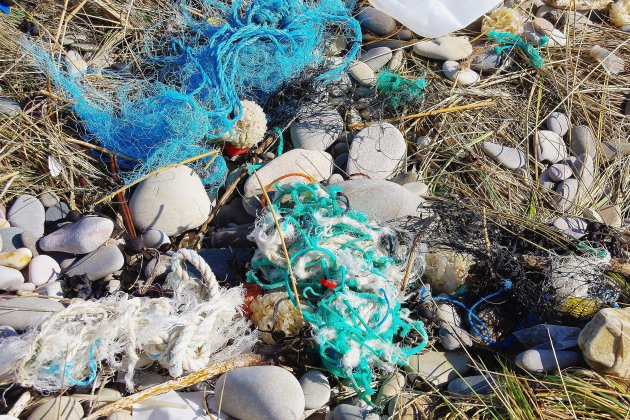 Une collecte de déchets organiséepour nettoyer la plage