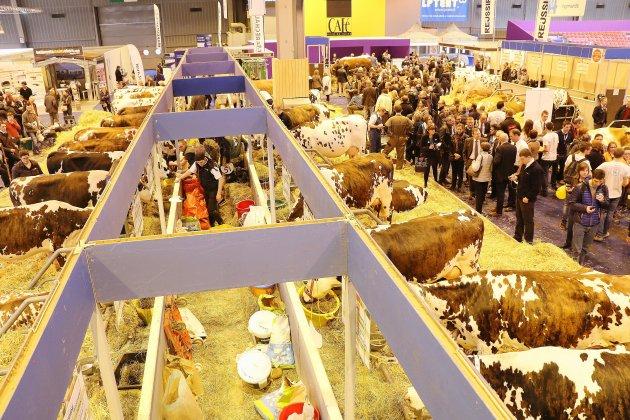 Le Salon de l'agriculture annulé, le concours général agricole maintenu