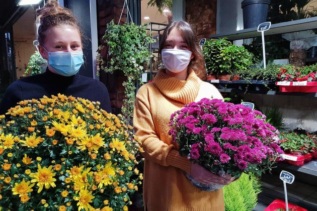 Les fleuristes ont jusqu'à la Toussaint pour écouler leurs stocks