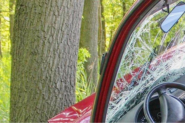 La sortie de route se termine contre un arbre