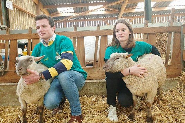 Ils vont représenter larégion au concours national des jeunes bergers
