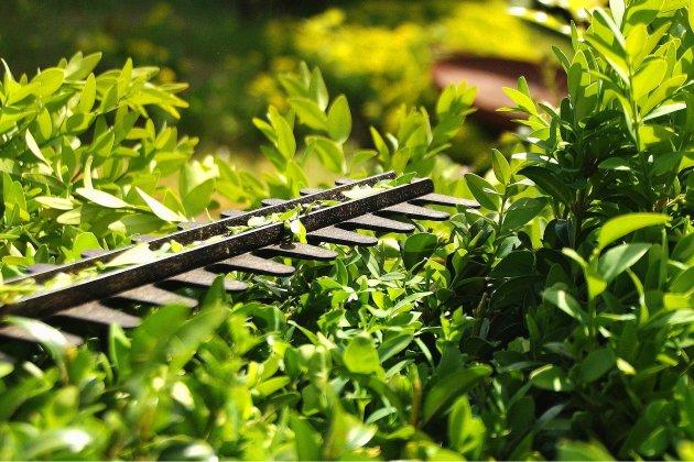 Gagnez votre ensemble outillage de jardin pour le printemps