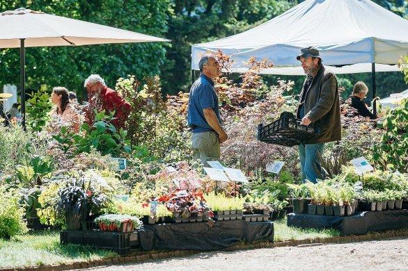 Graines de jardin: entre nature et culture