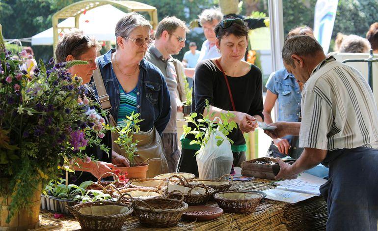 Actualit s informations et loisirs rouen page 61 for Graines de jardin 2016 rouen