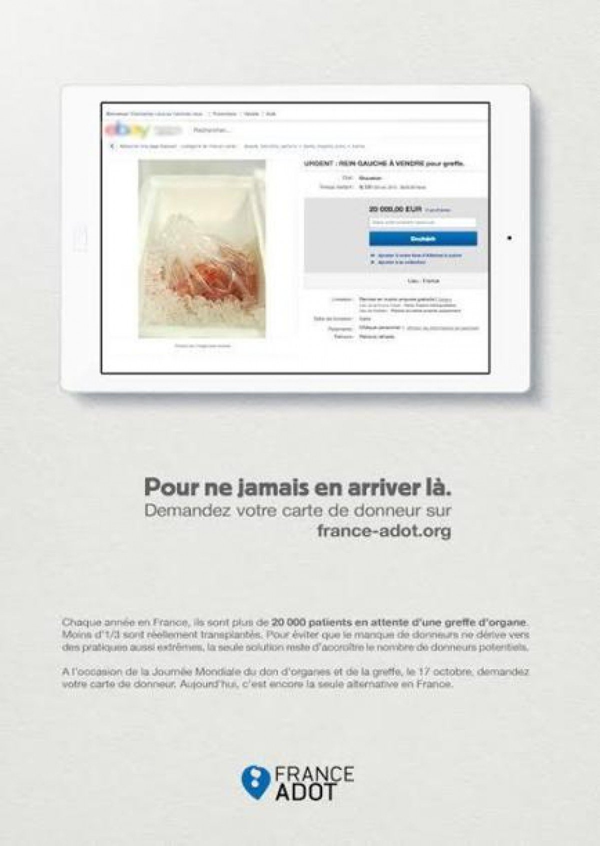 Un rein humain vendre sur ebay 20 000 euros for Piscine 20000 euros