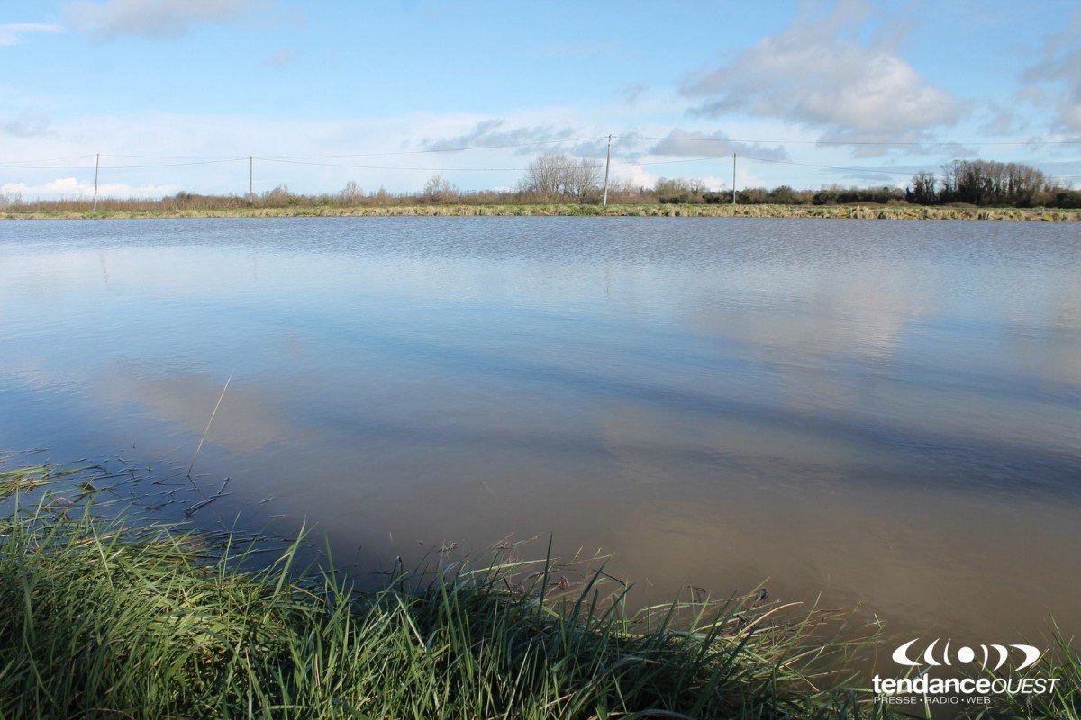 M t o en normandie inondations isigny sur mer photos - Meteo noyelles sur mer ...