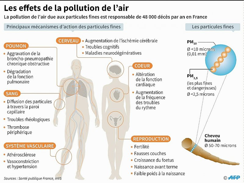 Les effets de la pollution de l'air