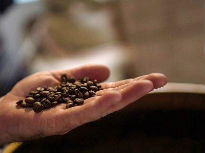 Une étude menée aux Etats-Unis a montré un lien entre une plus grande consommation de café et un risque plus faible de mortalité résultant de maladies cardio-vasculaires, respiratoires, rénales, de cancers et de diabète    CHRISTOPHE SIMON [AFP/Archives]