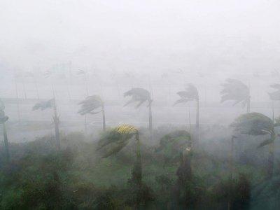 La ville de Miami frappée par l'ouragan Irma, le 10 septembre 2017    SAUL LOEB [AFP]