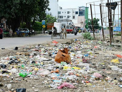 Une rue jonchée de détritus dans la ville de Gonda en Inde, le 20 août 2017 - SAJJAD HUSSAIN [AFP]