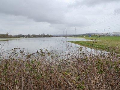 L'eau est toujours présente dans certains champs près de Cléon, deux semaines après la crue. - Amaury Tremblay