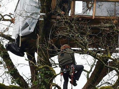Un opposant au projet Cigéo d'enfouissement des déchets nucléaires grimpe dans une cabane érigée dans un arbre du Bois Lejuc, le 22 février 2017 à Mandres-en-Barrois, près de Bure (Meuse)    Jean Christophe VERHAEGEN [AFP/Archives]