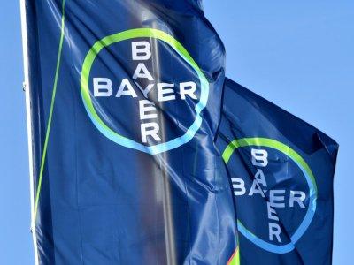 Bayer ne semble pas vouloir arrêter la production du glyphosate, toujours plébiscité par les cultivateurs pour son efficacité et son faible coût mais très critiqué, notamment en Europe    Patrik STOLLARZ [AFP/Archives]