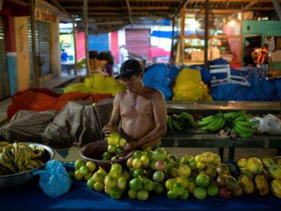 Un marché de fruit à Téfé, en Amazonie, au Brésil, le 30 juin 2018    MAURO PIMENTEL [AFP]