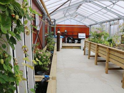 Fraises, herbes aromatiques, tomates, choux, champignons... différentes variétés vont être développées. - Célia Caradec