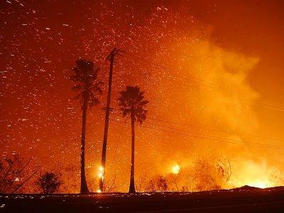 Le feu fait rage des deux côtés de l'autoroute Pacific Coast Highway, à Malibu, en Californie    Robyn Beck [AFP]