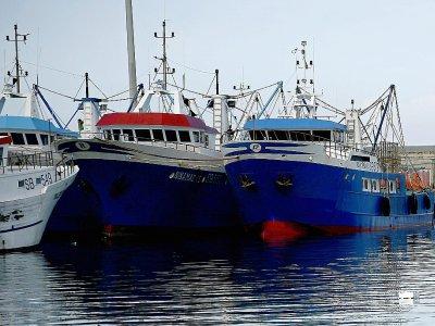 Des bateaux de pêche dans le porte de San Benedetto del Tronto, le 23 mai 2019 en Italie    Filippo MONTEFORTE [AFP]