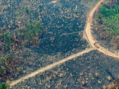 Vue aérienne d'un camion transportant des troncs d'arbre dans une zone de déforestation à Boca do Acre au Brésil, le 24 août 2019 - LULA SAMPAIO [AFP]
