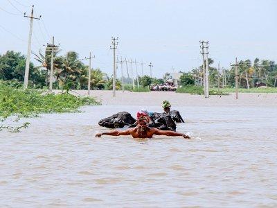 Un fermier aide son troupeau à traverser une voie submergée en Inde, près de Jamkhandi Taluk dans l'Etat du Karnataka (sud) le 11 août 2019 - STR [AFP]