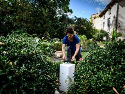 L'artiste Manon Damiens installe ses sculptures dans le jardin d'un habitant de Saint-Saturnin le 26 septembre 2019    JEAN-PHILIPPE KSIAZEK [AFP]