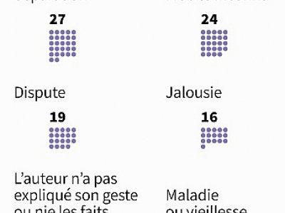 Les mobiles des féminicides    Simon MALFATTO [AFP]
