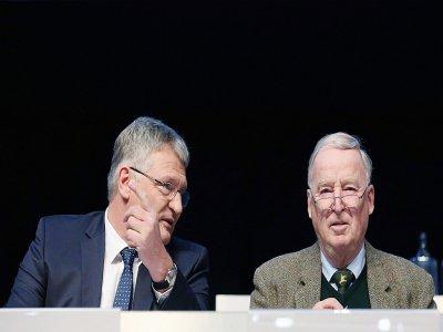 Les co-présidents de l'AfD, Jörg Meuthen et Alexander Gauland, au congrès du parti antimigrants à Brunswick en Allemagne le 30 novembre 2019 - Ronny Hartmann [AFP]
