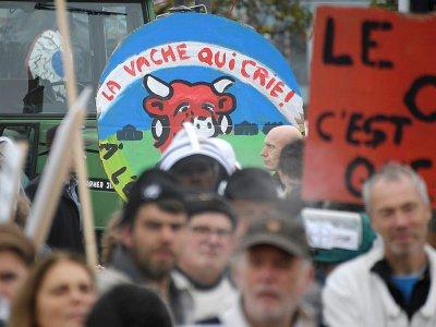 """Défilé à Strasbourg avec les manifestants qui brandissent une pancarte """"la vache qui crie"""", à Strasbourg, le 22 octobre 2019    FREDERICK FLORIN [AFP/Archives]"""