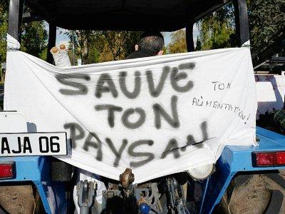 Manifestation d'agriculteurs pour dénoncer leurs conditions de vie, à Nice le 5 novembre 2019    VALERY HACHE [AFP/Archives]