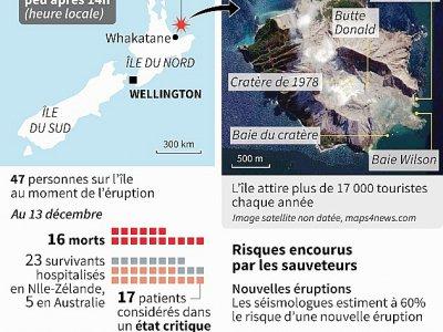 Eruption d'un volcan néo-zélandais - [AFP]