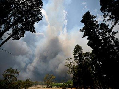 Un important feu de brousse à Balmoral, située à 150 kilomètres au  sud-ouest de Sydney en Australie, le 19 décembre 2019    Peter PARKS [AFP]