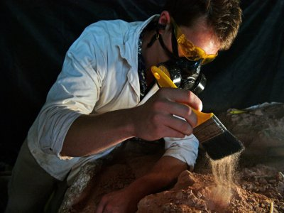Paleontologist Rodrigo Temp Muller examines a dinosaur fossil at a research center in Sao Joao do Polesine, Brazil -- the town is a treasure trove of fossils, and the site of the discovery of the first Gnathovorax skeleton