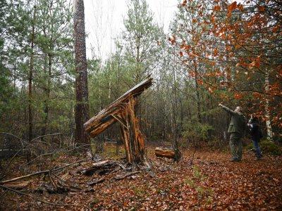 Le tronc cassé d'un arbre dans la forêt de Weitbruch, dans le Bas-Rhin, le 13 décembre 2019, vingt ans après la tempête de décembre 1999    FREDERICK FLORIN [AFP]
