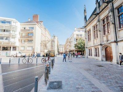 Les antivols sont installés sur les potelets, comme ici au niveau de l'Espace du palais à Rouen.    Métropole Rouen Normandie