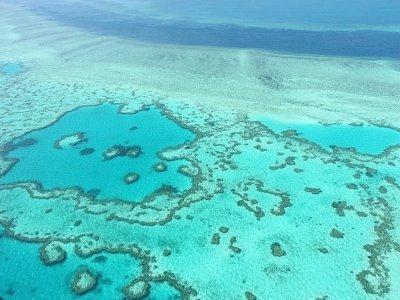 Vue aérienne de la Grande Barrière de corail, en novembre 2014 près des îles Whitsunday, en Australie    SARAH LAI [AFP/Archives]