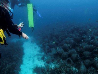 Des plongeurs visitent le musée sous-marin dans la mer Égée, au large de l'île grecque d'Alonissos, le 20 juillet 2021    WILL VASSILOPOULOS [AFP]