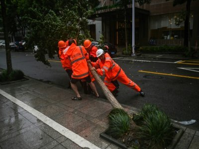 Des arbres sont tombés au passage du Typhon In-Fa à Ningbo, dans l'est de la Chine, le 25 juillet 2021 - Hector RETAMAL [AFP]