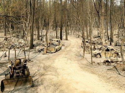Une zone résidentielle carbonisée par un feu de forêt à Berry Creek, dans le comté de Butte (nord de la Californie), le 14 septembre 2020.    JOSH EDELSON [AFP]