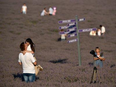 Des touristes visitent et se photographient dans un champ de lavande, à Valea-Trestieni, en Moldavie, le 10 juillet 2021 - SERGEI GAPON [AFP]