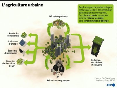 L'agriculture urbaine     [AFP]