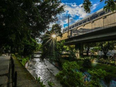 Corridor vert à Medellin en Colombie, le 15 juin 2021    JOAQUIN SARMIENTO [AFP]