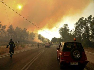Des pompiers tentent de maîtriser un vaste incendie à Labiri (Grèce), le 31 juillet 2021    STR [Eurokinissi/AFP]