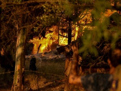 Des pompiers interviennent sur un feu de forêt à Labiri, en Grèce, le 31 juillet 2021    STR [Eurokinissi/AFP]