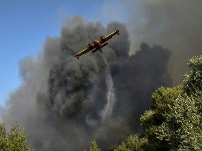 Un avion largue de l'eau sur un feu de forêt à Labiri, près de Patras (Grèce), le 31 juillet 2021    STR [Eurokinissi/AFP]