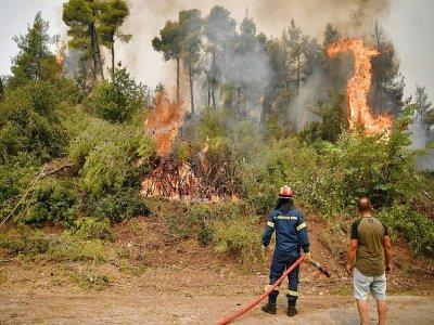 Des pompiers luttent contre les incendies qui menacent un village au nord de l'île d'Eubée, le 5 août 2021    LOUISA GOULIAMAKI [AFP]