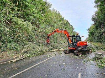 Il faut abattre des arbres pour soulager le talus.